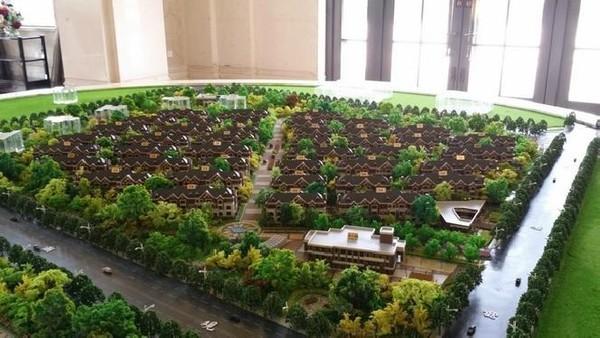 景观 平面图 墙 植物