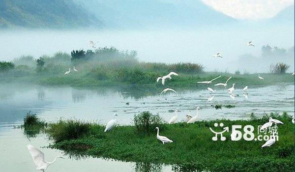 全名格局白鹭岛 紧邻潮白河湿地公园