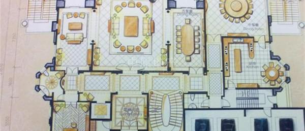 观澜湖蔓菲亚独栋别墅 d户型大宅户型非常稀缺 豪华装修