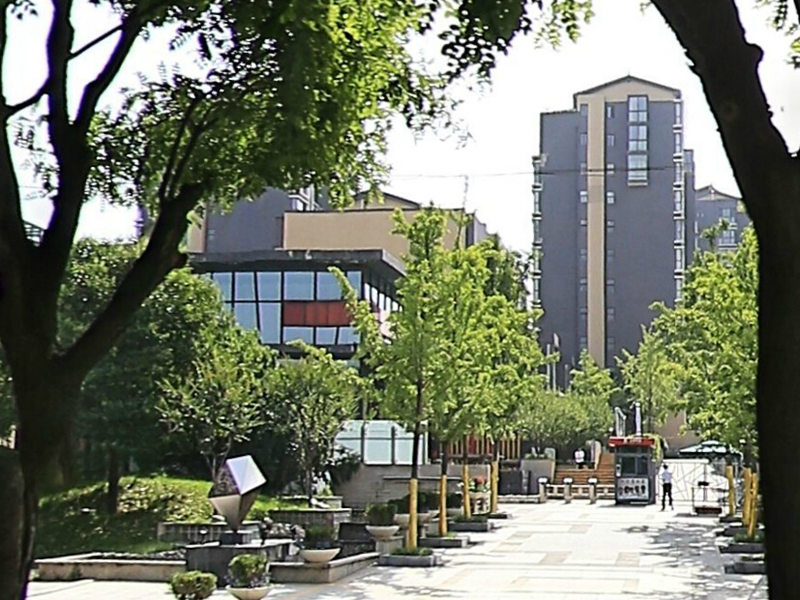 金地尚林苑别墅