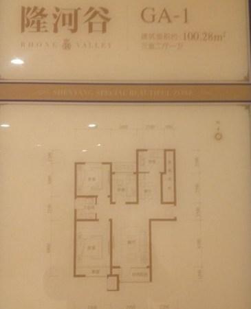 沈阳新南站 瑞家地产独家代理隆河谷别墅 独享折上折-室内图-5