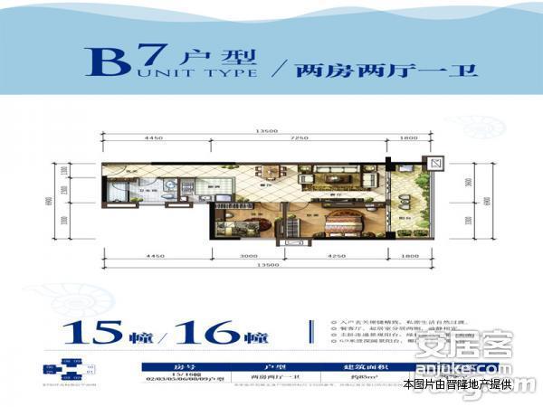 雅居乐海南清水湾-户型图2