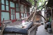 京城最高学府 实验二小本校 私产平房落户上学有名额