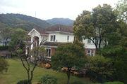 九溪玫瑰园实景拍摄,豪装别墅 杭城地标式建筑,花园约500方