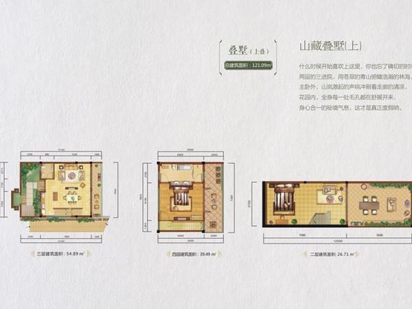 龙湾·雨林谷-户型图4
