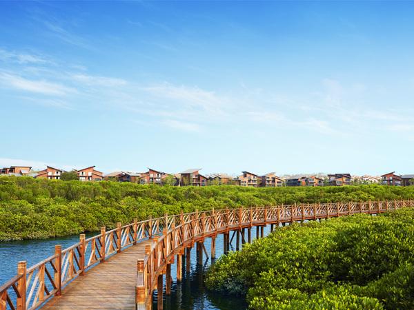 富力千亩红树林 湿地公园围绕2房精装48万享内外双海湾福地 -室外图-362978610