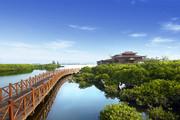 澄迈富力红树湾,精装小洋房享内外双海景观,2200亩湿地公园-室外图-363113371