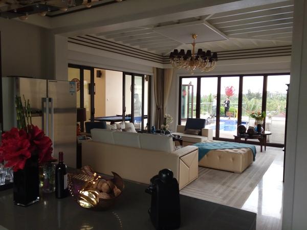 申亚亚龙湾壹号 国湾中枢 一院两天堂 空中泳池 私家电梯 -室内图-3