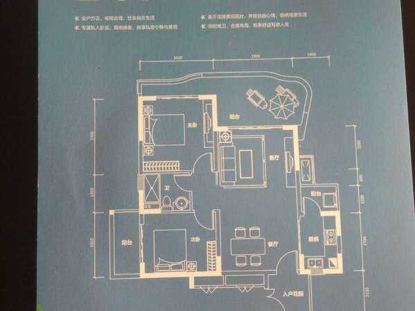 世界长寿之乡半岛壹号养生度假号别墅开发商直销现买现住-室外图-347188784