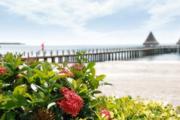 博鳌碧桂园拥有优质海岸线,细软的沙滩、湛蓝的海水高端别墅住宅-室外图-2
