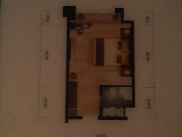 大光谷现房小户 一室一厅47万即买即收租-室内图-5
