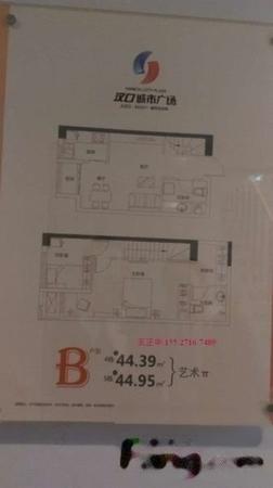 后湖汉口城市广场双地铁公寓44平精品Loft买一层送一层-室内图-3