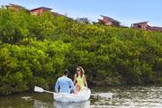 澄迈富力红树湾,精装小洋房享内外双海景观,2200亩湿地公园-室外图-363113373