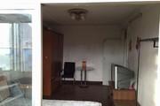 东丽区(金华里)一室一厅 阳户型 津门雪片 随时看房