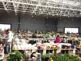 呈贡新城斗南花花世界10万临街商铺45低首付总价低