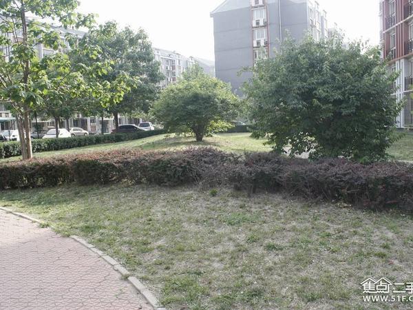 瑞江花园兰苑-外观图4