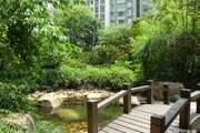 南京西路 凤阳路上海一街区高层精装两房两厅急租8000!