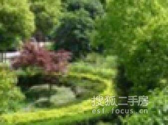 中乾国际广场(中乾商务花园)